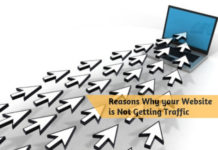 Reasons Why your Website is Not Getting Traffic