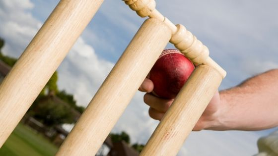Expanding the game-related skill base with the help of fantasy cricket application