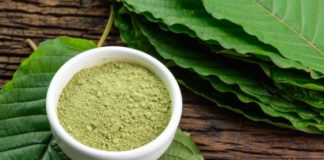 4 Things You Need to Know About Kratom for Back Pain