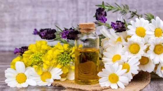 4 Must-Have Herbal Oils