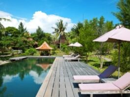 Reform, Revive and Rehabilitate at an Eco Resort
