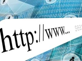 How to find domain information using WHOIS tool?