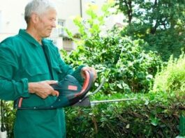 Pruning and Hedge Grown Garden Hedging