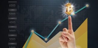 Want to Make Productive Revenues Through the Bitcoin Trade - Follow These Tips