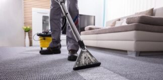 How Professional Carpet Cleaning Can Improve the Overall Health of Your Family