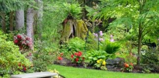 How to Make Your Garden Your Summer Retreat