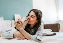 5 Adorable Ideas for Your Animal Loving Friends