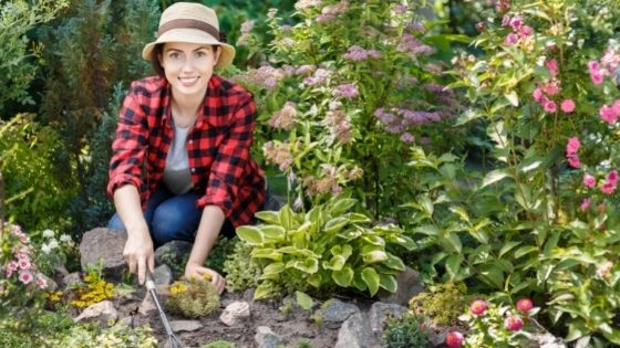 Advice to Help Keep your Garden Weed-free