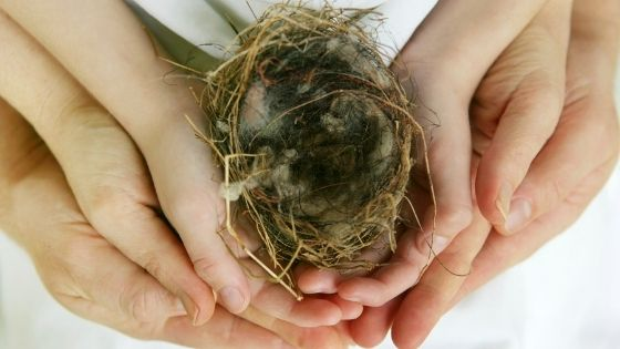 Empty Nesting